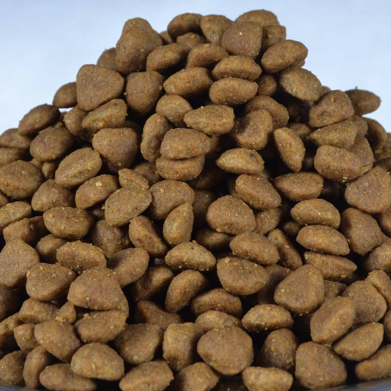 Natural dry dog food  fresh meat