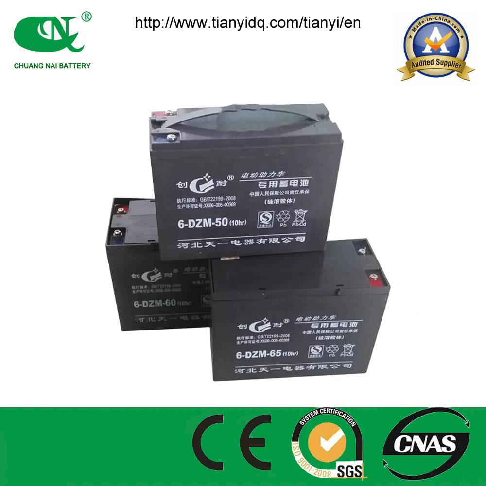 48v50ah sealed lead acid battery for electric richshow