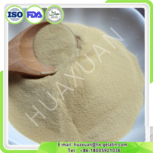 Collagen chicken powder/type 2