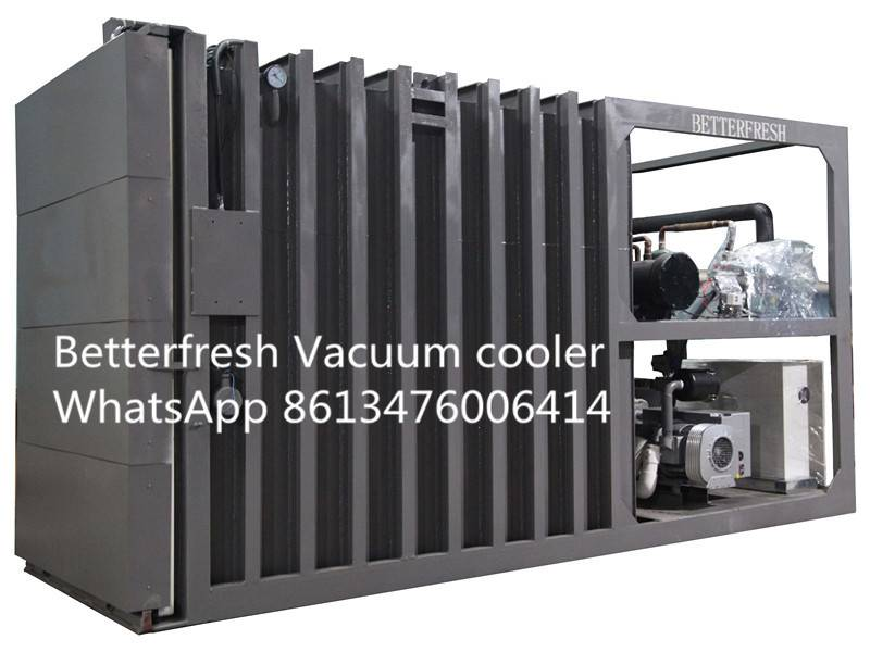Fresh Vegetable Fruit Flower Vacuum Cooling Vacuum Cooler with Rapid cooling for increasing shelf li