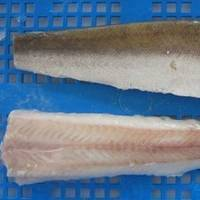 Frozen Hake Fillets