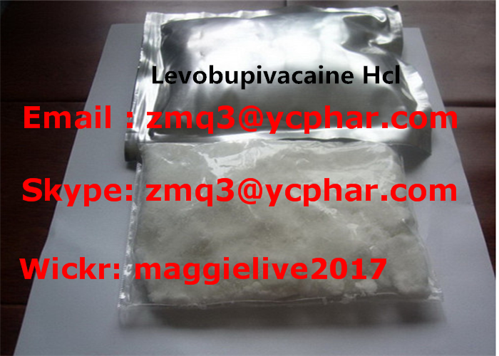 Topical Pain Relief Drugs Levobupivacaine HCL Raw Powder CAS 27262-48-2 Usage