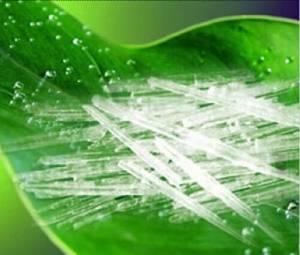 Menthol Crystals DIY Juice Flavor Concentrate for DIY E Liquid, Fragrance Aroma, Essential Oil, Flav