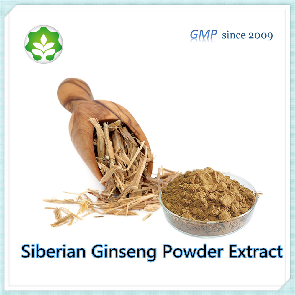 traditional Chinese herbs siberian eleuthero extract