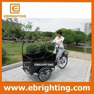 3 wheel electric cargo bike