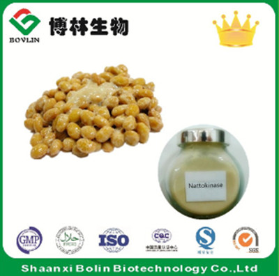 100% Pure Natural Nattokinase Powder