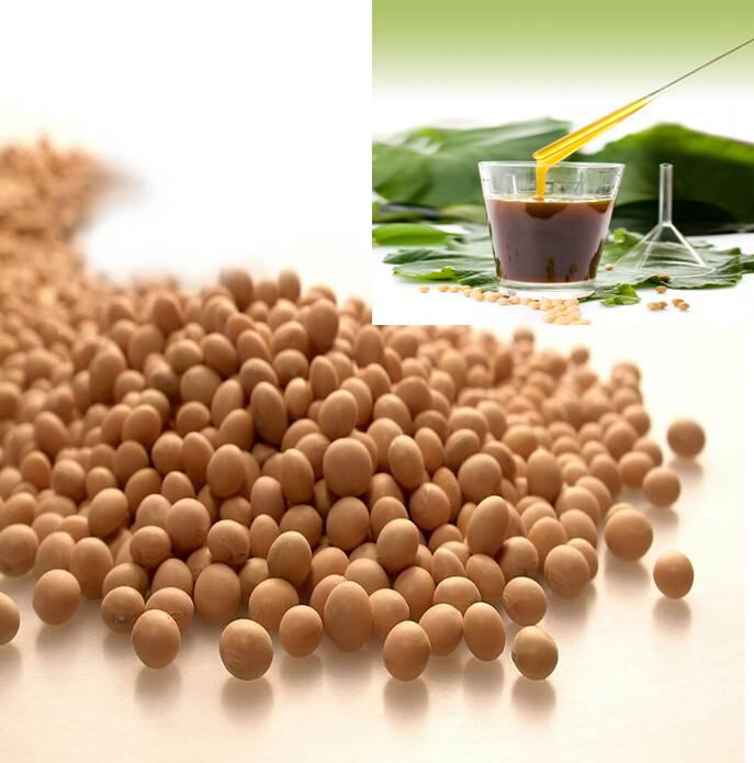 food grade soya lecithin