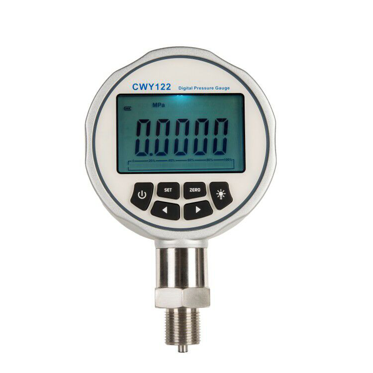 Digital precision pressure gauge- CWY122