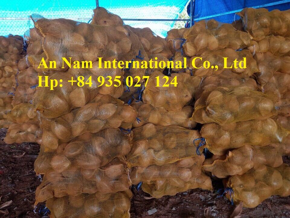 Dried Coconut from VietNam 008four935zero27one24