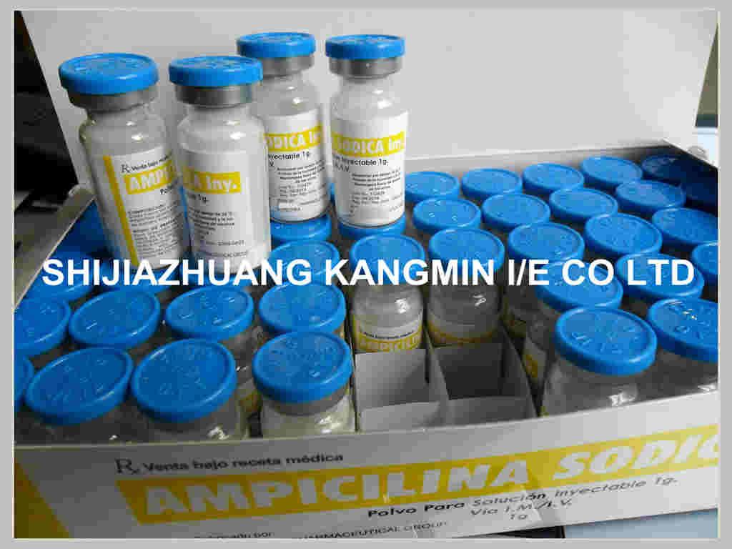 ampicilline sodium for injection