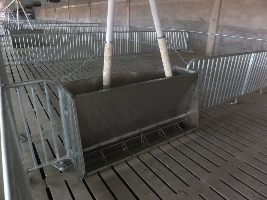 Pig feeder, the feed quantity can be adjusted
