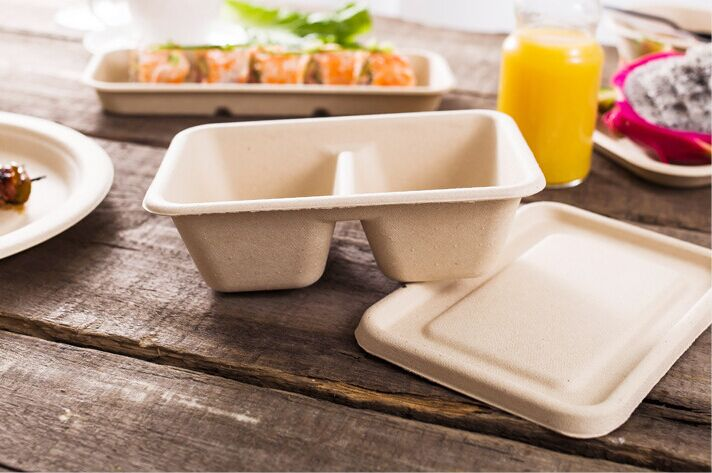 Good quality disposable fast food box for hotel