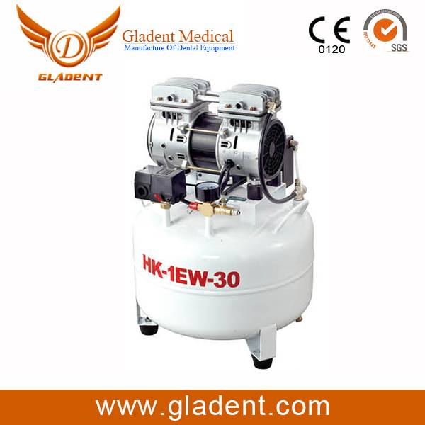 Hot Selling Foshan Gladent mini screw air compressor