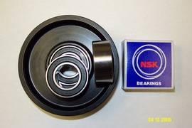 supply Japan NSK Bearings