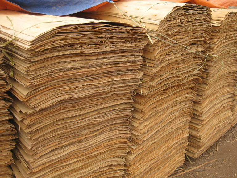 Natural Acacia Core Wood Veneer with Cheapest price