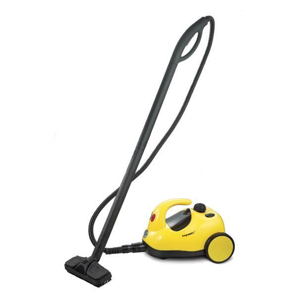 steam cleaner