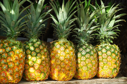 Sweet Fresh Pineapples for sale