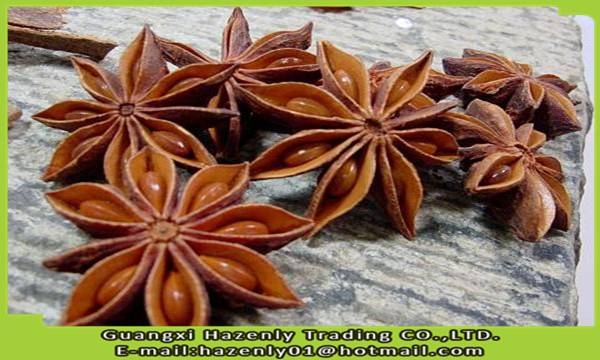 2015 China new crop star aniseed whole