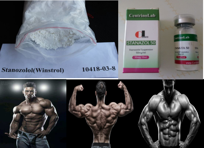 99.5% High Purity Winstrol / Stanozolol Stanazol steriods raw powders Muscle Building