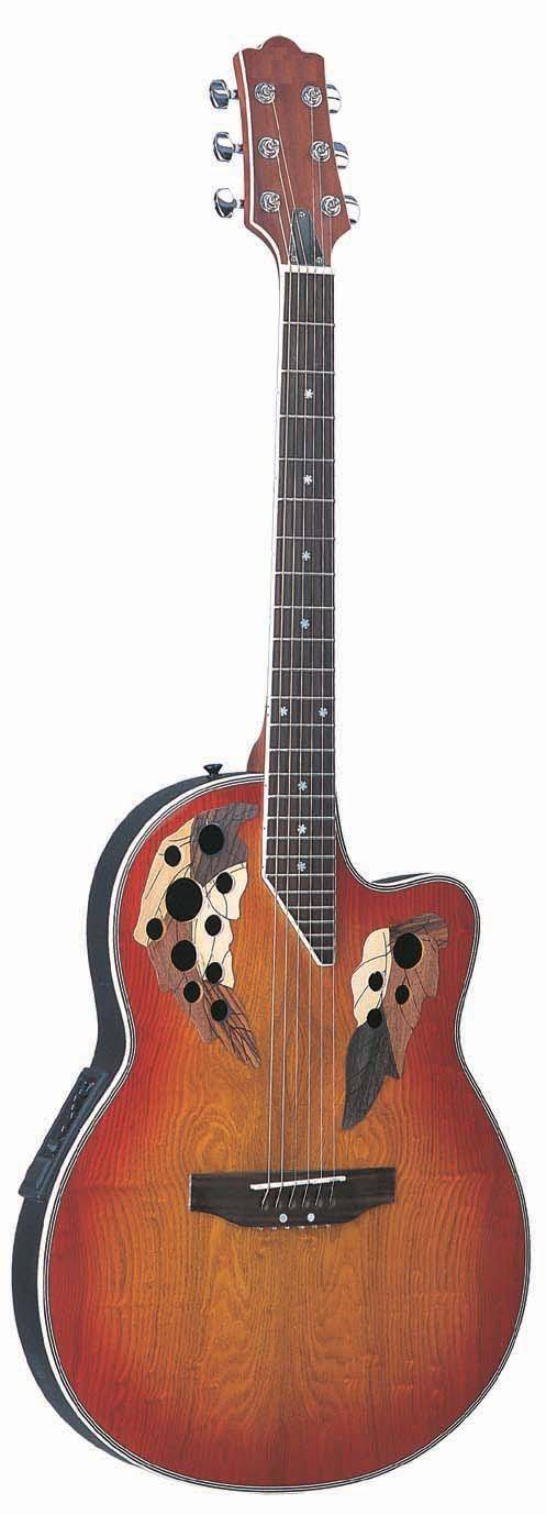 Acoustic Guitar (RS series)