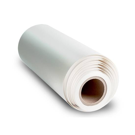 PET Roll Up Film