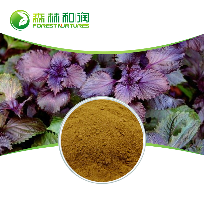 Veterinary plant feed additive Forage Additives perilla seed extract powder