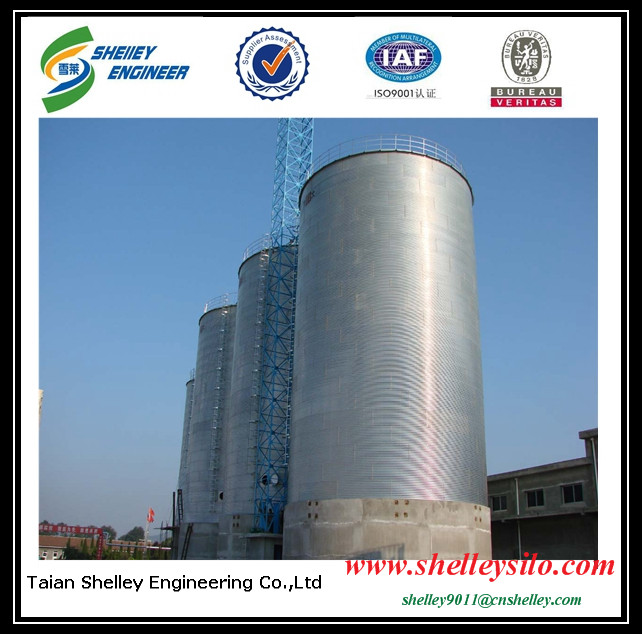 3000t cereal silo for beans storage