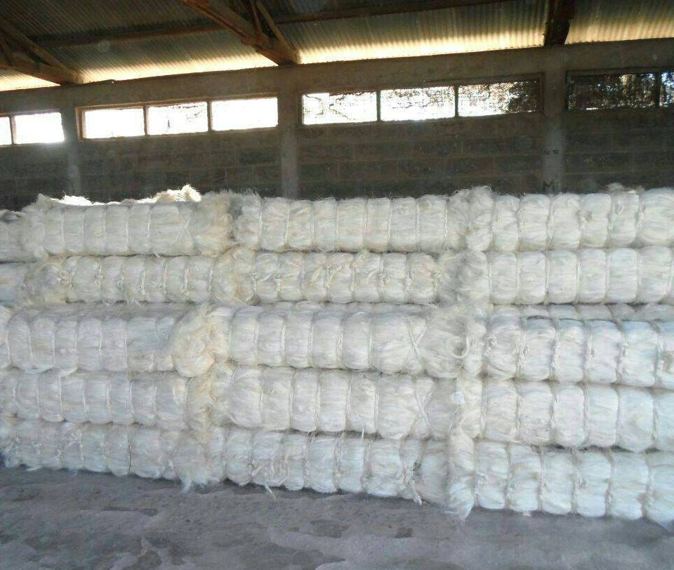 Natural Kenyan Sisal Fiber Manufacturer,Exporter & Supplier