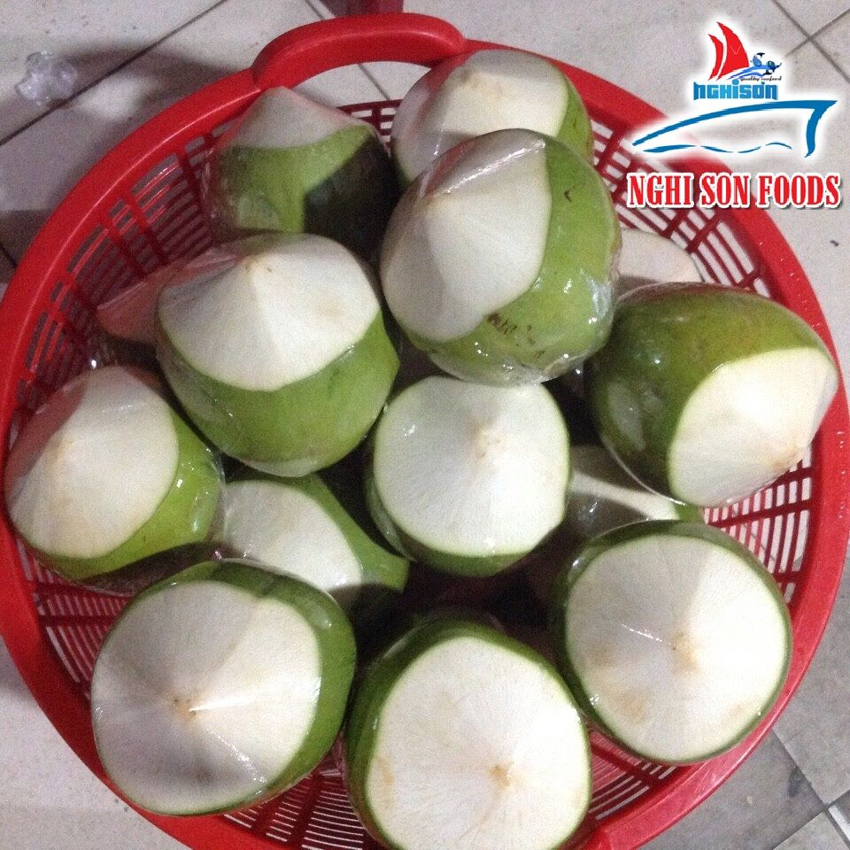 Vietnam Fresh Young Coconut