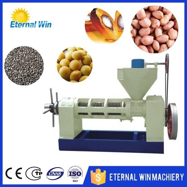 palm kernal oil press machine
