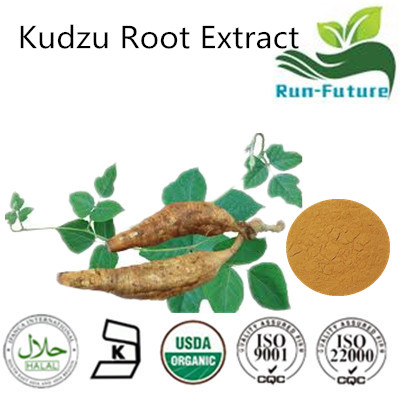 Kudzu Root Extract ,kudzu powder manufacturers