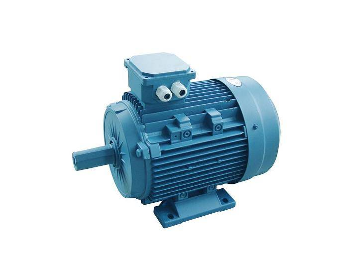 induction motor(Y2 series three-phase induction motor )