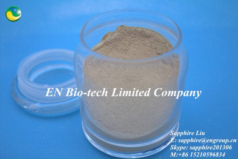 Cellulase Enzyme for feed/ food/ industry use