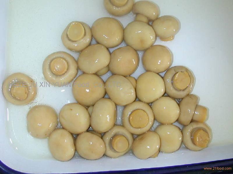 canned  mushroom (whole)