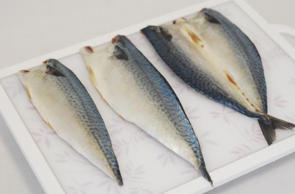 Seafood from nature(wild) - Frozen low-salted Mackerel