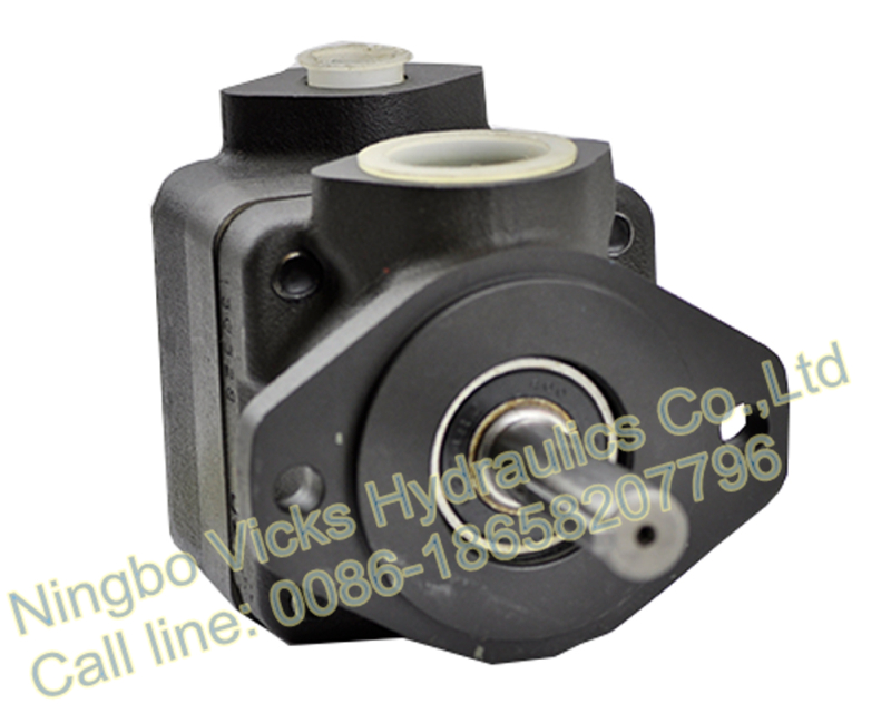 High Quality Rotary Pump V20 Single Vane Pump F3-V20-1P02S-38C20L