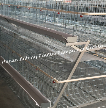 Normative Farm Use 20000 Layers A Type Layer rearing equipment