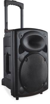 100w Portable PA System with two Wireless Hand Held Microphones