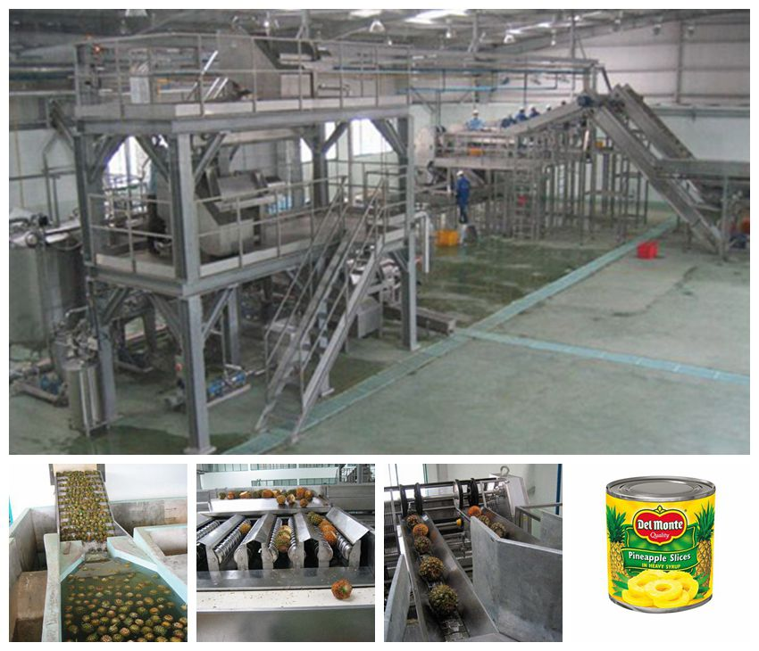 canned fruit processing line