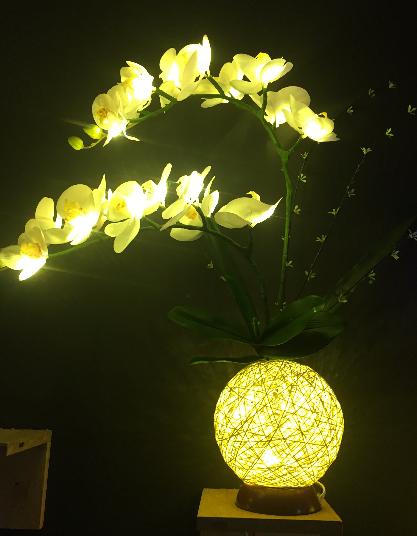 butterfly flower light