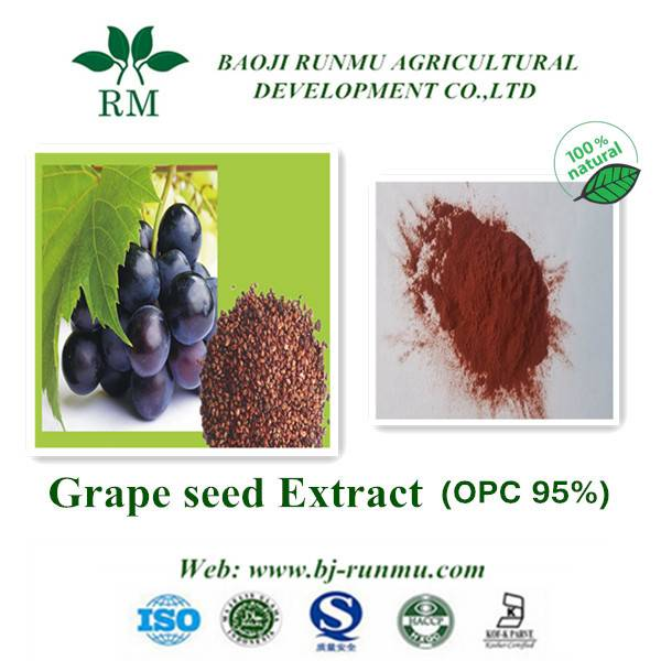 natural grape seed extracts proanthocyanidins 95%