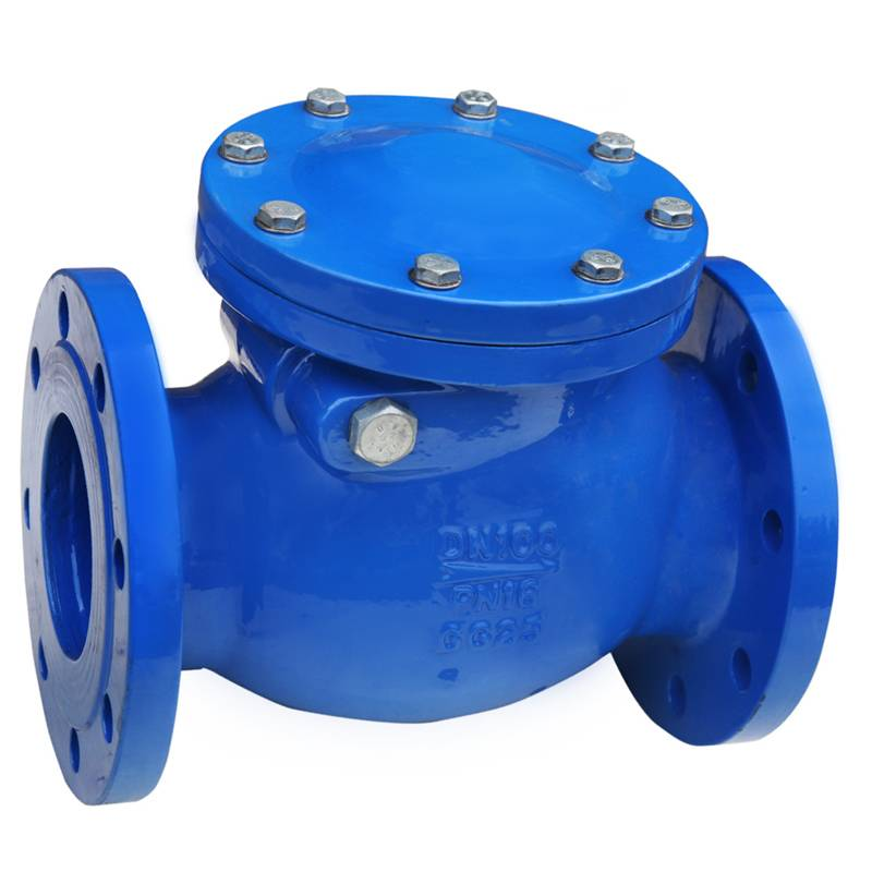 MSS SP-71/BS/DIN Swing Check Valve