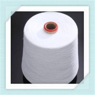 Virgin Polyester yarn