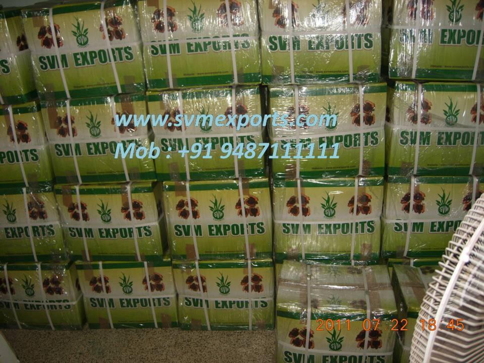 Moringa oliefera seed  seller