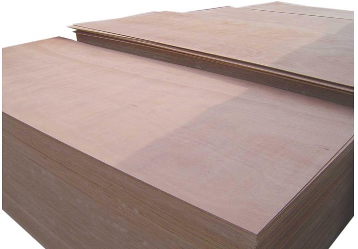 FSC commercial plywood BIRCH, PINE