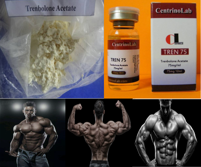 99.0% High Purity Oral & Injectable grade steroid Trenbolone Acetate Finaplix Revalor-H raw Powder