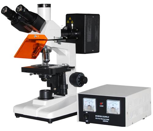 L1501 Relected Fluorescence Microscope
