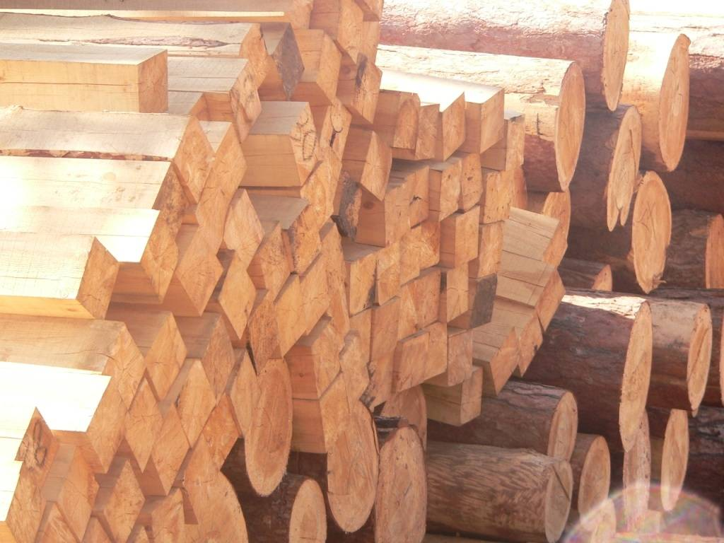 red pine and larch logs