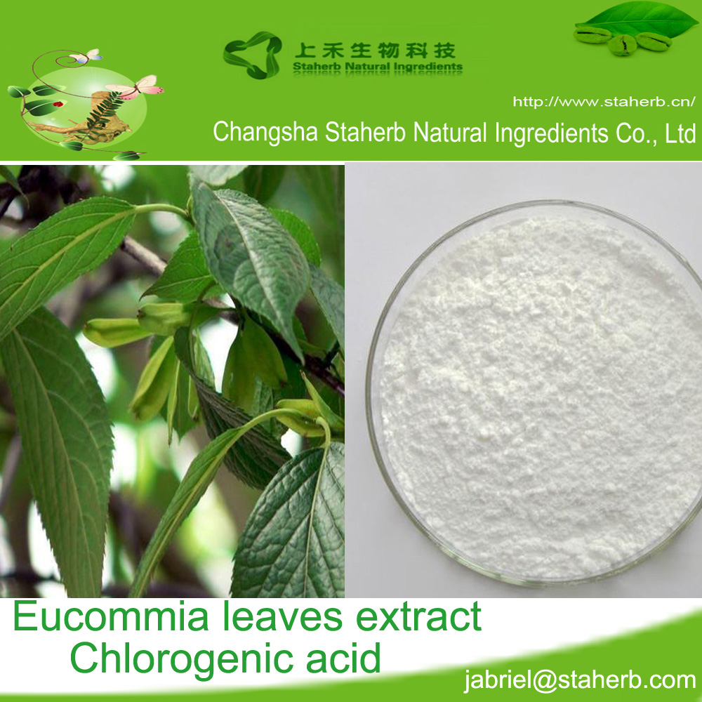 Chlorogenic acid 5-98%