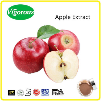 Free sample apple extract Polyphenols/green apple powder/apple juice powder